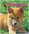 Cover: Dingoes
