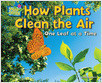 Cover: How Plants Clean the Air