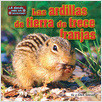 Cover: Las ardillas de tierra de trece franjas (Thirteen-Lined Ground Squirrels)