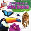 Cover: Los colores de la selva tropical (Rain Forest Colors)