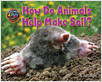Cover: How Do Animals Help Make Soil?