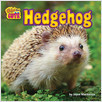 Cover: Hedgehog