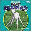 Cover: Baby Llamas