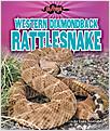 Cover: Western Diamondback Rattlesnake
