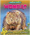 Cover: Wombat