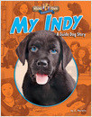 Cover: My Indy