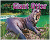 Cover: Giant Otter