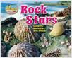 Cover: Rock Stars