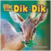 Cover: Dik-Dik