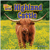 Cover: Highland Cattle