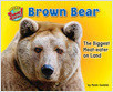 Cover: Brown Bear