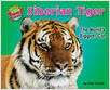 Cover: Siberian Tiger