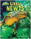 Cover: Little Newts