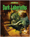 Cover: Dark Labyrinths