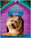 Cover: Cairn Terrier