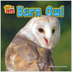 Cover: Barn Owl