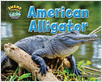 Cover: American Alligator