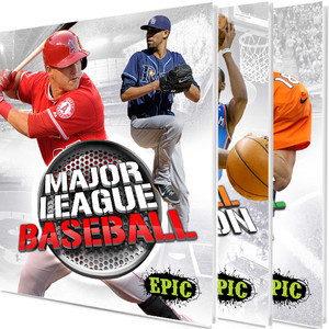 Cover: Major League Sports