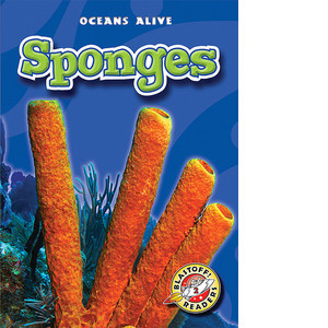 Cover: Sponges