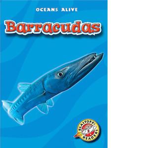 Cover: Barracudas