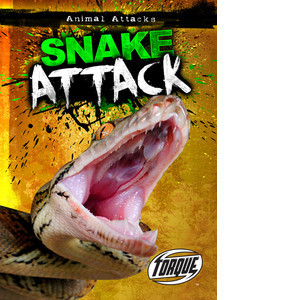 Cover: Snake Attack