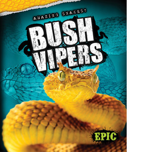 Cover: Bush Vipers