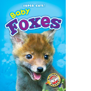 Cover: Baby Foxes