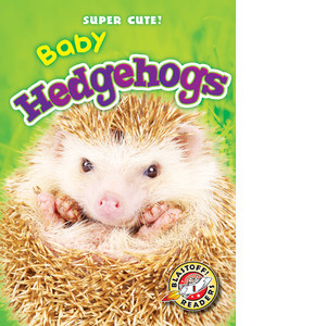 Cover: Baby Hedgehogs