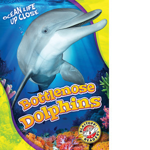 Cover: Bottlenose Dolphins