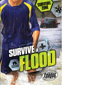 Cover: Survive a Flood