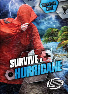 Cover: Survive a Hurricane