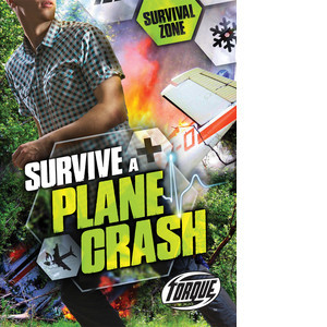 Cover: Survive a Plane Crash