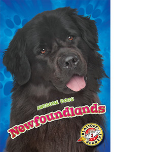 Cover: Newfoundlands
