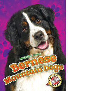 Cover: Bernese Mountain Dogs