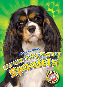 Cover: Cavalier King Charles Spaniels