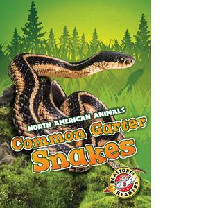 Cover: Common Garter Snakes