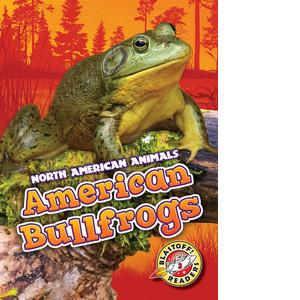 Cover: American Bullfrogs