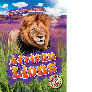 Cover: African Lions
