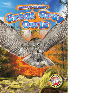 Cover: Great Gray Owls
