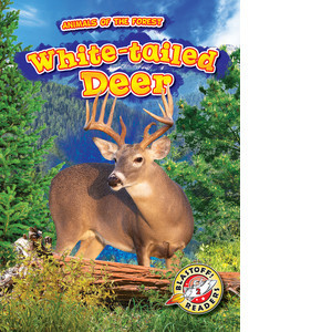 Cover: White-tailed Deer