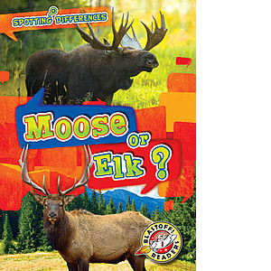 Cover: Moose or Elk?