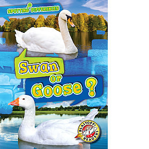 Cover: Swan or Goose?