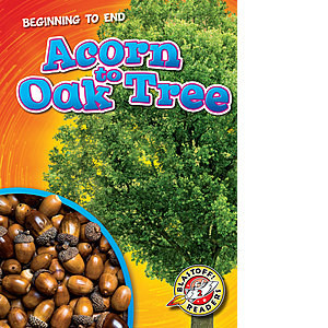 Cover: Acorn to Oak Tree
