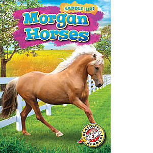 Cover: Morgan Horses
