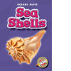 Cover: Sea Shells