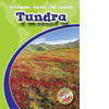 Cover: Tundra