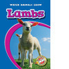 Cover: Lambs