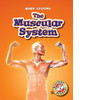 Cover: The Muscular System