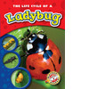 Cover: The Life Cycle of a Ladybug