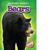 Cover: Bears